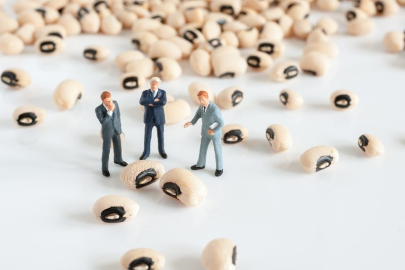 Miniature commission administrators and managers strategize the best way to count actual beans and calculate commissions.
