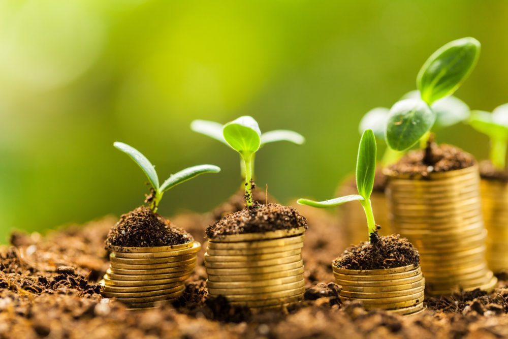 stacks of coins under growing plant sprouts as a metaphor for sales commissions growing sales motivation